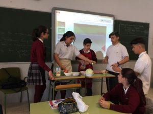 alumnos salle cadiz haciendo la receta