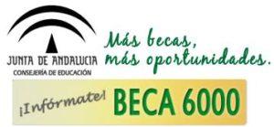 resolucion-becas-6000-2012-2013